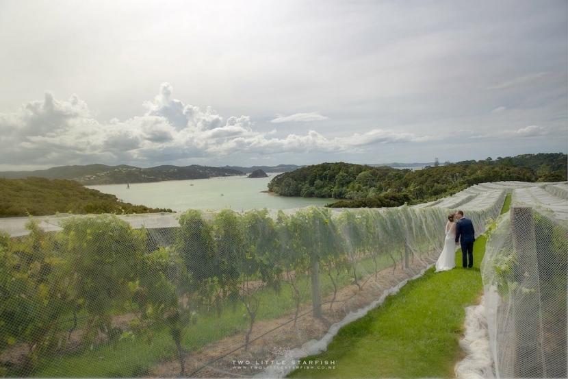 Bride & Groon ibetween the vines at Omata estate Russell NZhair LaurelStratford hairstylist